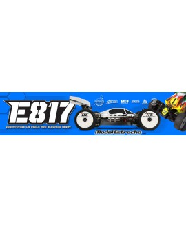 HOT BODIES E817 1/8 BUGGY ELECTRICO